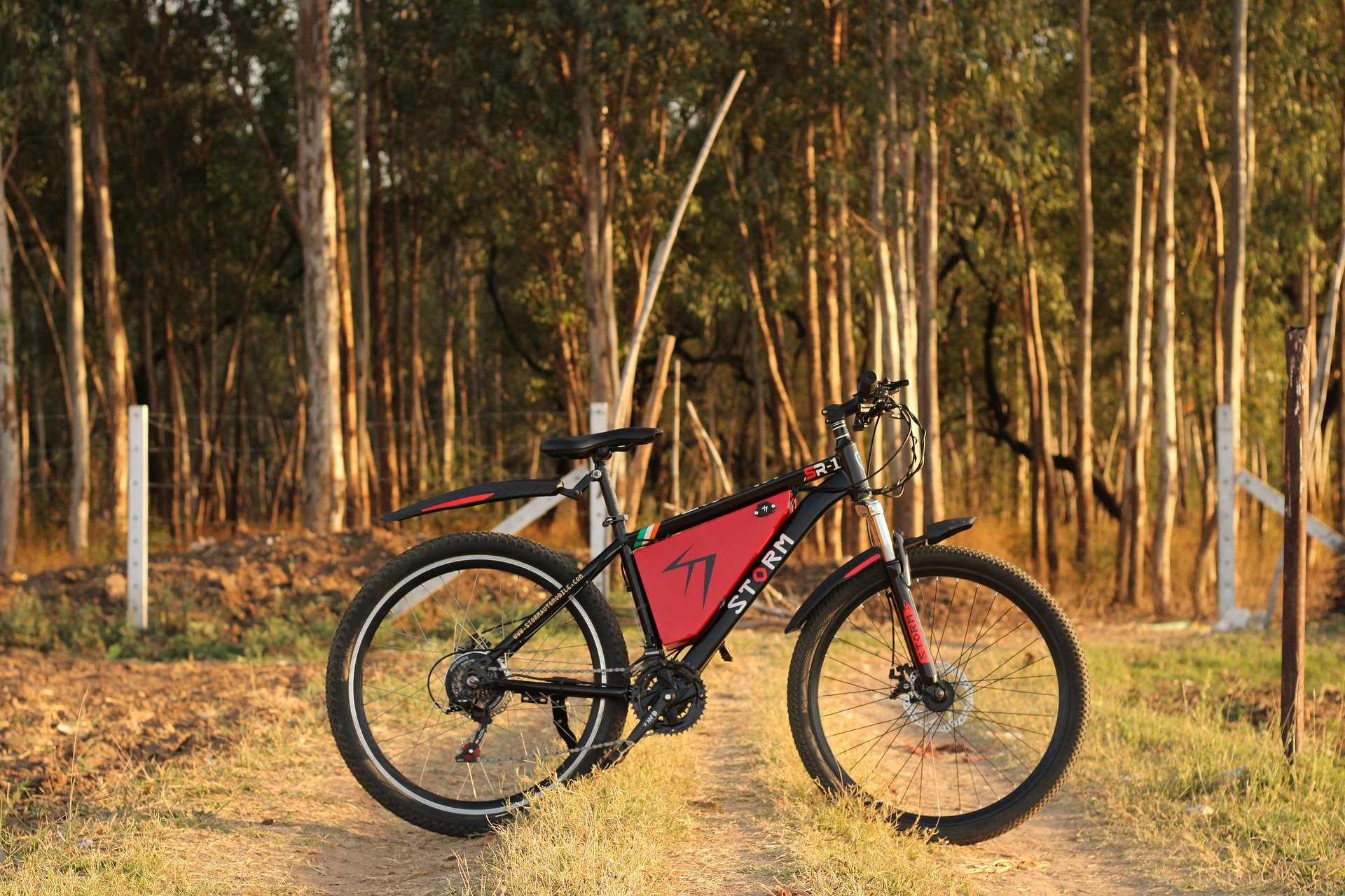 Smart e bike from Rad Power Bikes(Electronic bikes) is the thinnest and cheapest electric bike to date